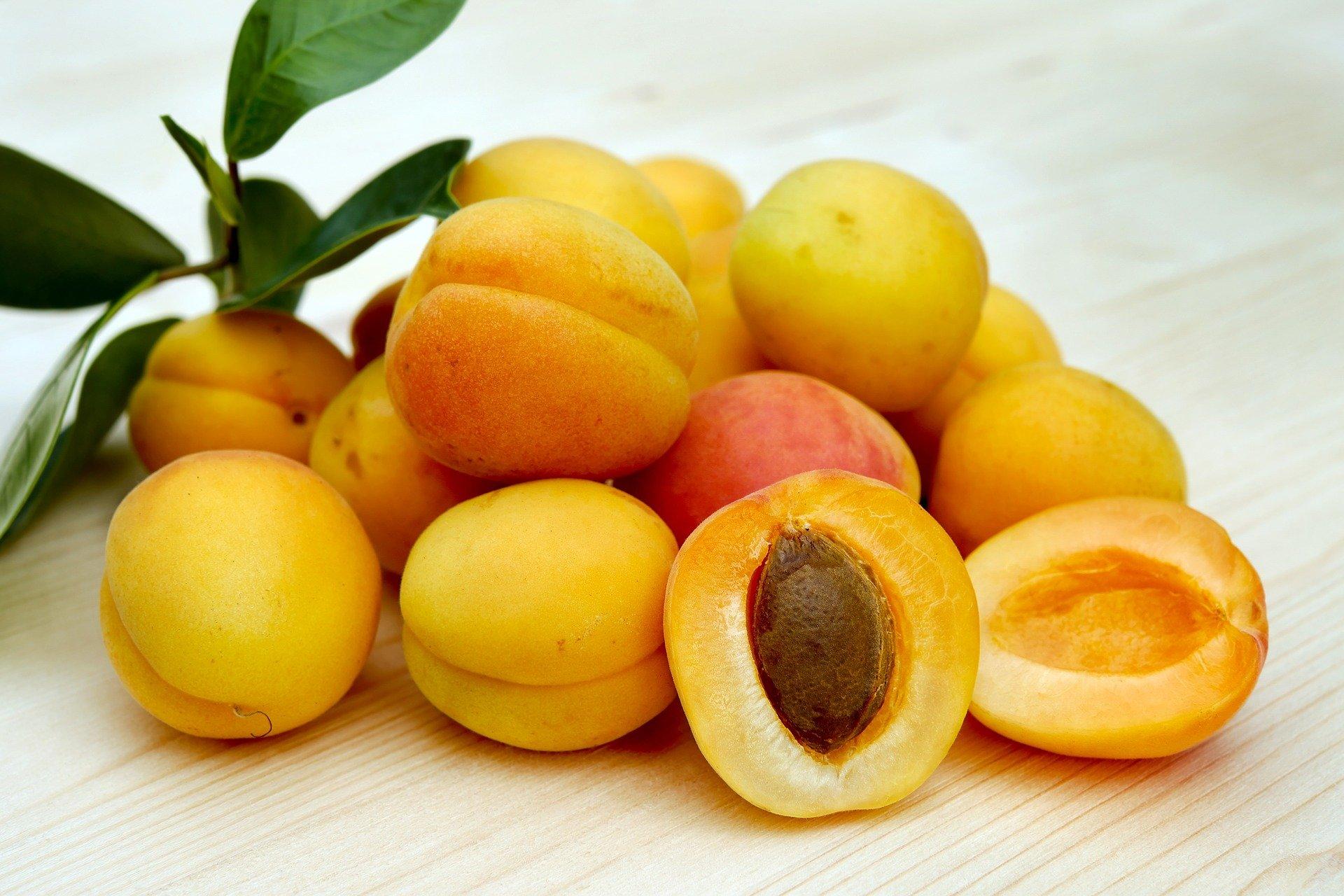 aprire una frutteria