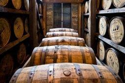 Aprire una distilleria artigianale